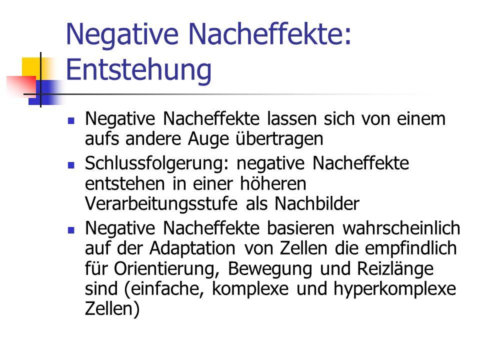 Negative Nacheffekte: Entstehung Negative Nacheffekte lassen sich von einem aufs andere Auge übertragen Schlussfolgerung: negative Nacheffekte entsteh