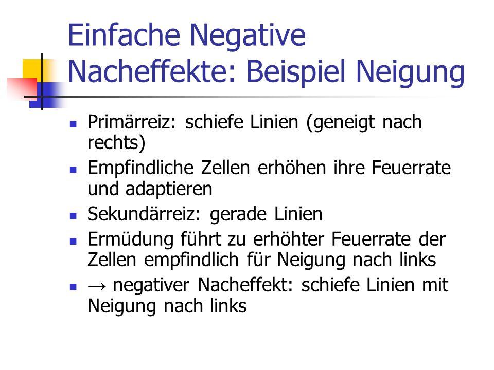 Einfache Negative Nacheffekte: Beispiel Neigung Primärreiz: schiefe Linien (geneigt nach rechts) Empfindliche Zellen erhöhen ihre Feuerrate und adapti