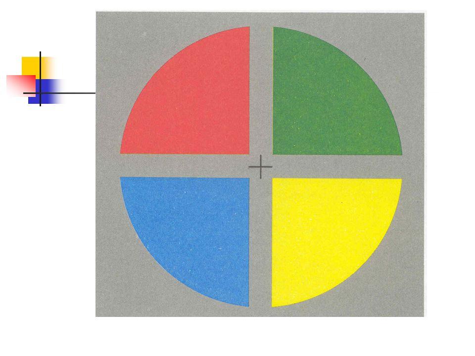 Zusammenfassung: Negative Nacheffekte Negative Nacheffekte beruhen auf Adaptation von Zellen im Visuellen Cortex Einfache Negative Nacheffekte Bewegung Neigung/ Kurven Negative Nacheffekte mit mehreren Komponenten McCollough-Effekt: Orientierung und Farbe Kombinationen mit Bewegung und Farbe