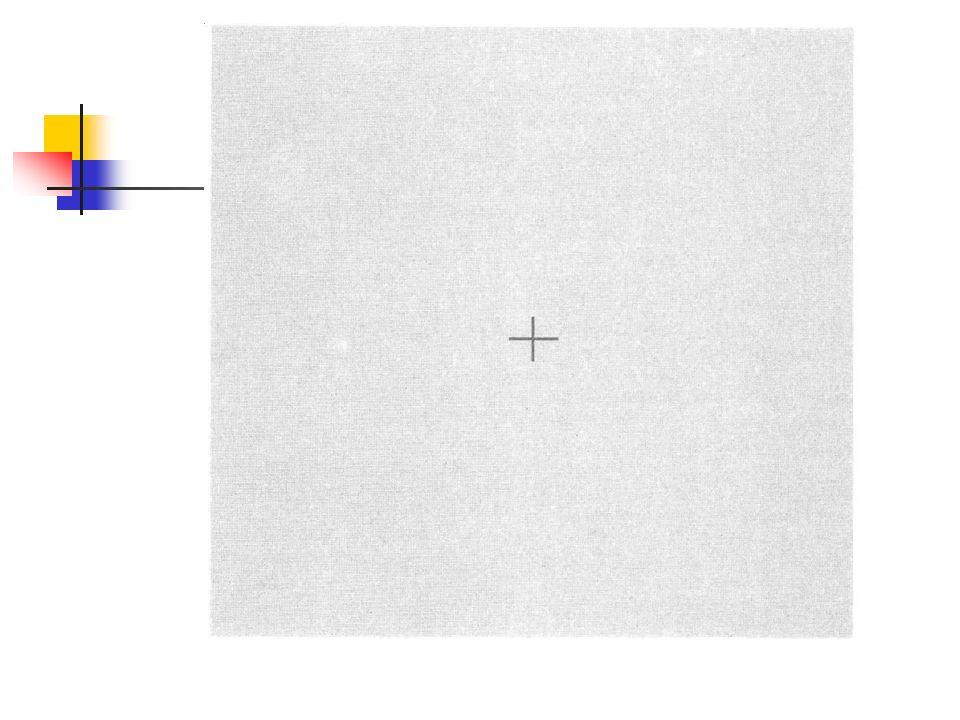 Definitionen Negative Nacheffekte Illusion erscheint in umgekehrter Richtung oder entgegen gesetzter Bewegung als der Primärreiz Beispiel: Wasserfall