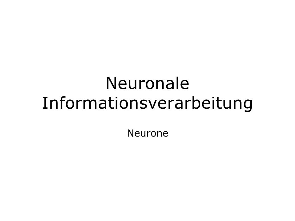 Neuronale Informationsverarbeitung Neurone