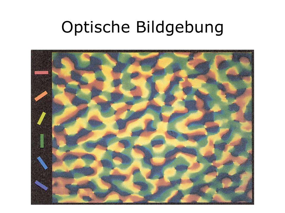 Optische Bildgebung
