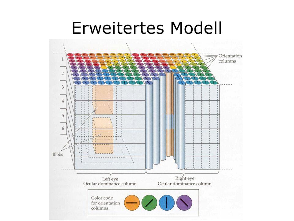 Erweitertes Modell