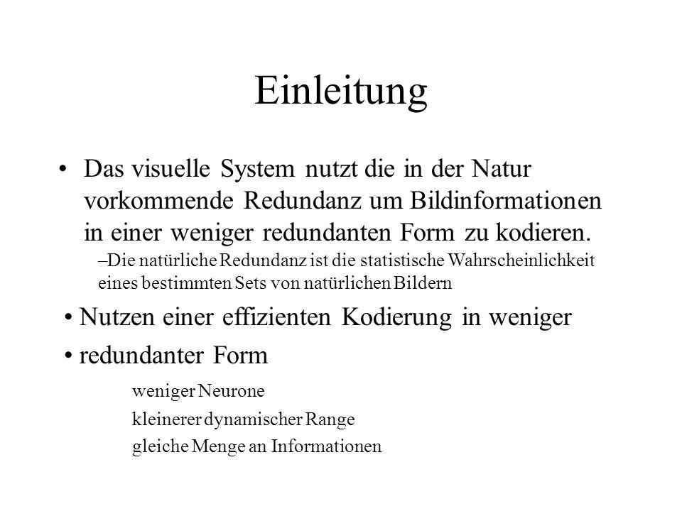 Einleitung Das visuelle System nutzt die in der Natur vorkommende Redundanz um Bildinformationen in einer weniger redundanten Form zu kodieren.