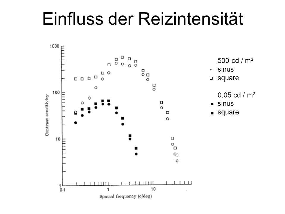 Einfluss der Reizintensität 500 cd / m² sinus square 0.05 cd / m² sinus square