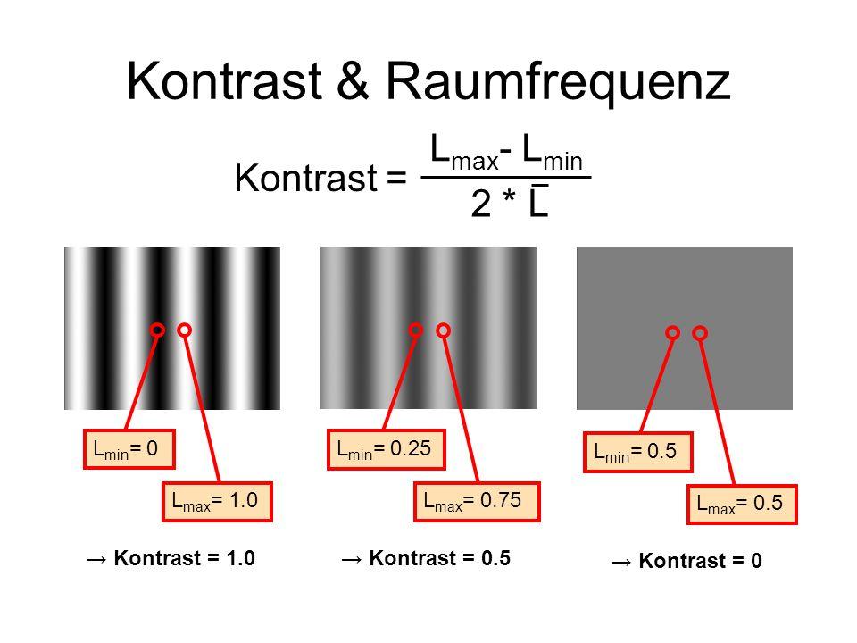 Kontrast & Raumfrequenz Kontrast = L max - L min 2 * L L min = 0.25 L max = 0.75 Kontrast = 0.5 L min = 0 L max = 1.0 Kontrast = 1.0 L min = 0.5 L max