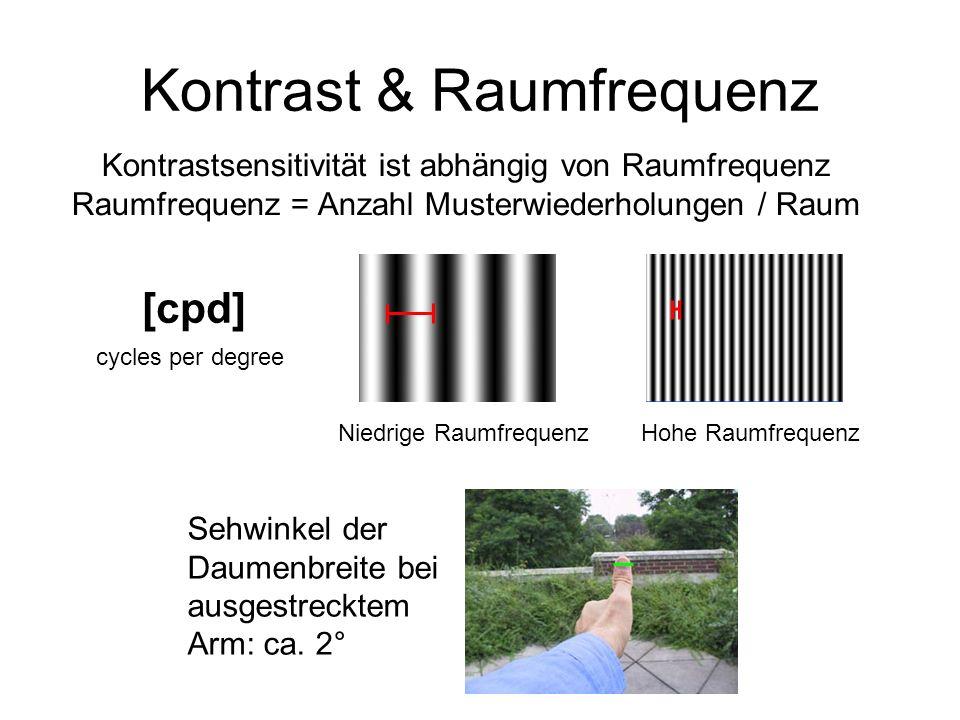 Kontrast & Raumfrequenz Kontrastsensitivität ist abhängig von Raumfrequenz Raumfrequenz = Anzahl Musterwiederholungen / Raum Sehwinkel der Daumenbreit