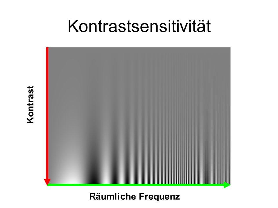 Kontrastsensitivität Räumliche Frequenz Kontrast