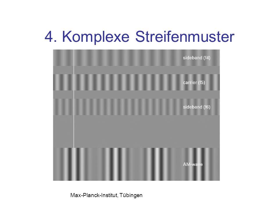 4. Komplexe Streifenmuster Max-Planck-Institut, Tübingen