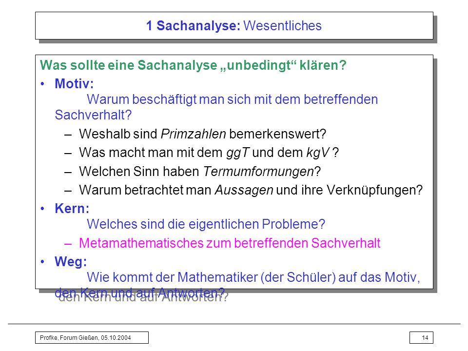 Profke, Forum Gießen, 05.10.200414 1 Sachanalyse: Wesentliches Was sollte eine Sachanalyse unbedingt klären? Motiv: Warum beschäftigt man sich mit dem
