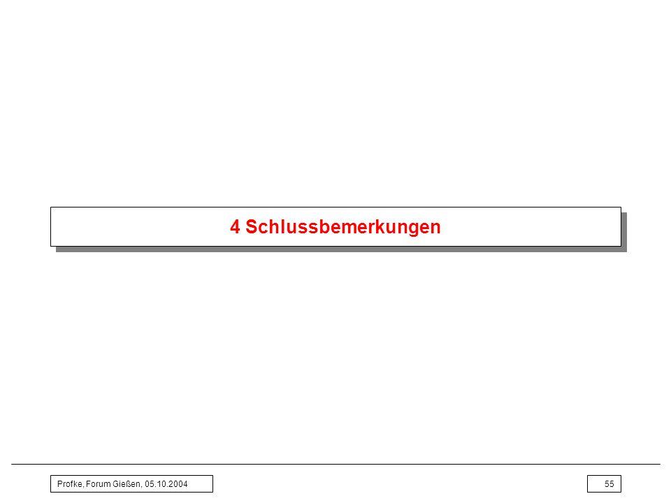 Profke, Forum Gießen, 05.10.200455 4 Schlussbemerkungen