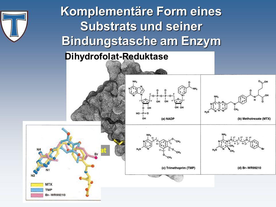 Tetrahydrofolat NADP+ Komplementäre Form eines Substrats und seiner Bindungstasche am Enzym Dihydrofolat-Reduktase