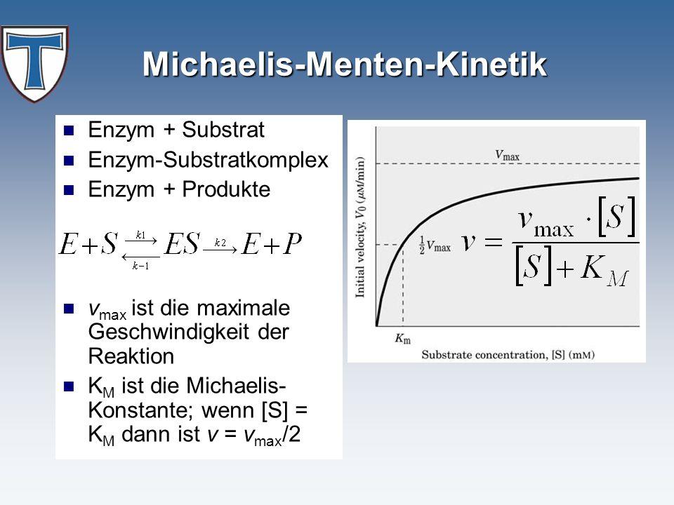 Michaelis-Menten-Kinetik Enzym + Substrat Enzym-Substratkomplex Enzym + Produkte v max ist die maximale Geschwindigkeit der Reaktion K M ist die Micha