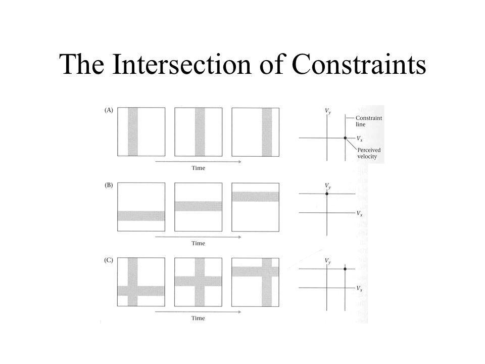 The Intersection of Constraints