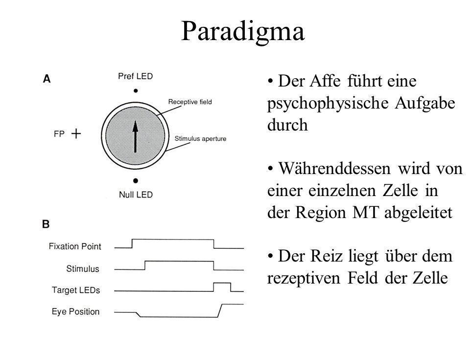 Paradigma Der Affe führt eine psychophysische Aufgabe durch Währenddessen wird von einer einzelnen Zelle in der Region MT abgeleitet Der Reiz liegt üb