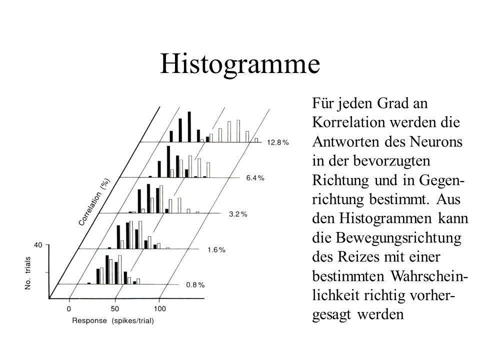 Histogramme Für jeden Grad an Korrelation werden die Antworten des Neurons in der bevorzugten Richtung und in Gegen- richtung bestimmt. Aus den Histog
