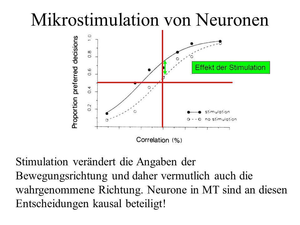 Mikrostimulation von Neuronen Stimulation verändert die Angaben der Bewegungsrichtung und daher vermutlich auch die wahrgenommene Richtung. Neurone in