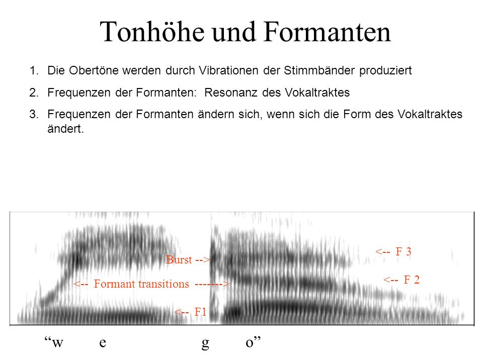Sprache bei Tieren? Vogelgesang weist Ähnlichkeiten mit menschlicher Sprache auf (früh erlernt, kritische Periode, neuronale Asymmetrie) Affen können