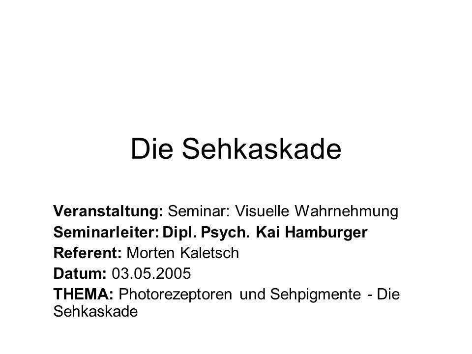 Die Sehkaskade Veranstaltung: Seminar: Visuelle Wahrnehmung Seminarleiter: Dipl.
