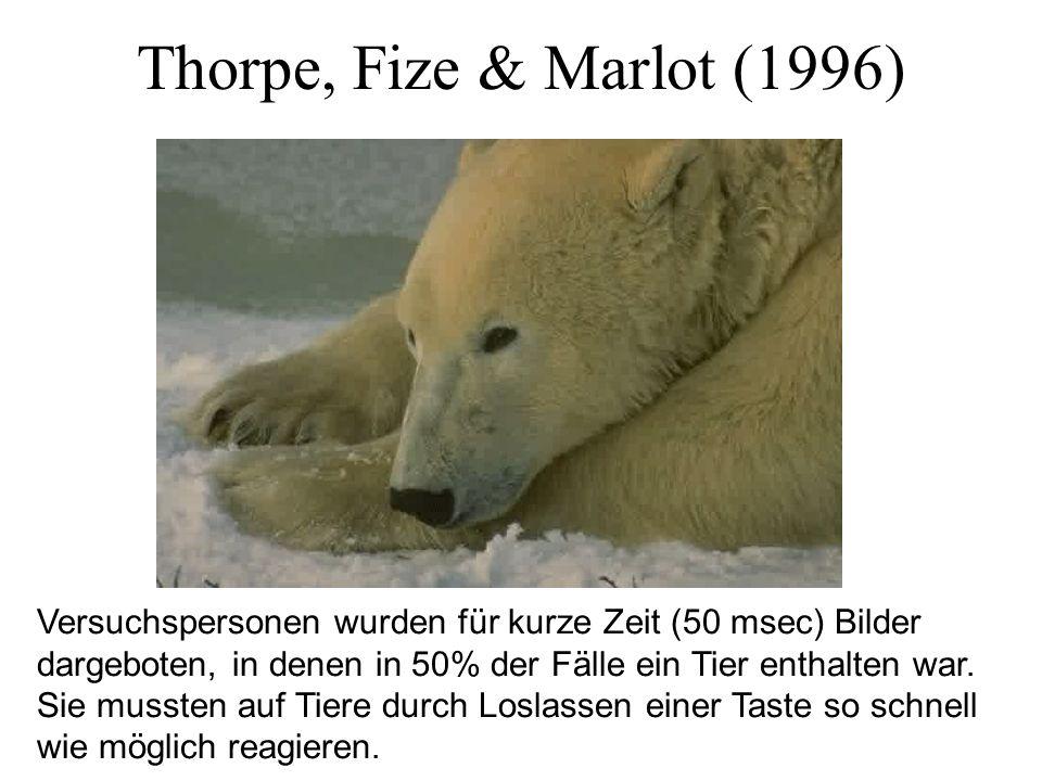 Thorpe, Fize & Marlot (1996) Versuchspersonen wurden für kurze Zeit (50 msec) Bilder dargeboten, in denen in 50% der Fälle ein Tier enthalten war. Sie