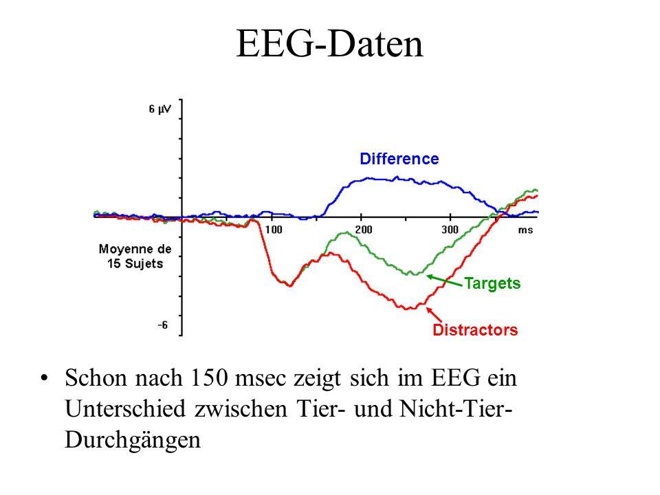 EEG-Daten Schon nach 150 msec zeigt sich im EEG ein Unterschied zwischen Tier- und Nicht-Tier- Durchgängen Targets Distractors Difference