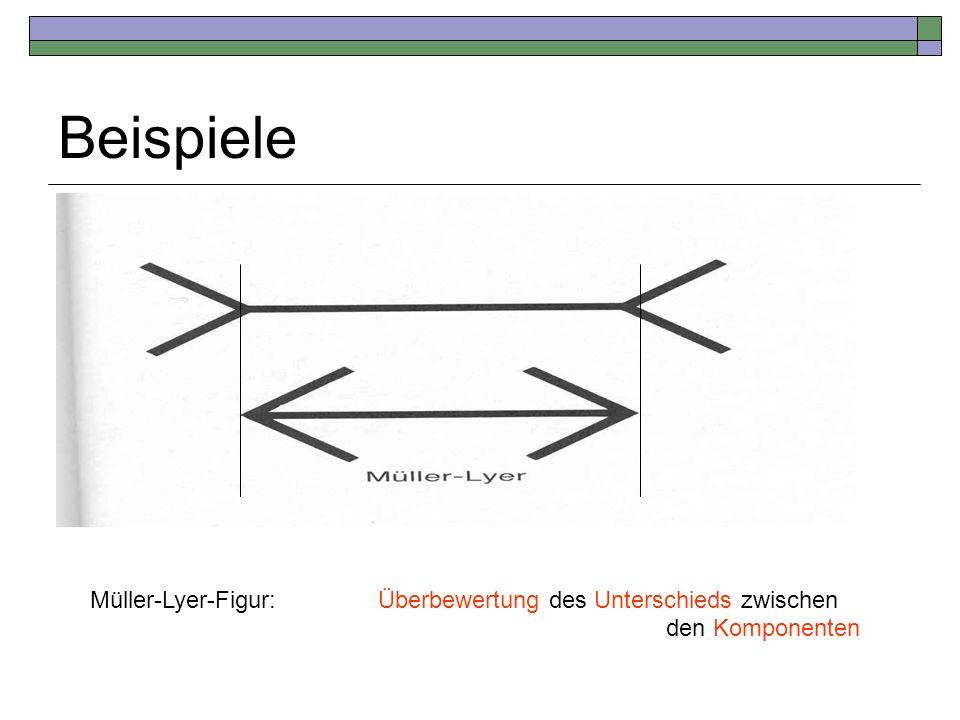 Beispiele Müller-Lyer-Figur:Überbewertung des Unterschieds zwischen den Komponenten