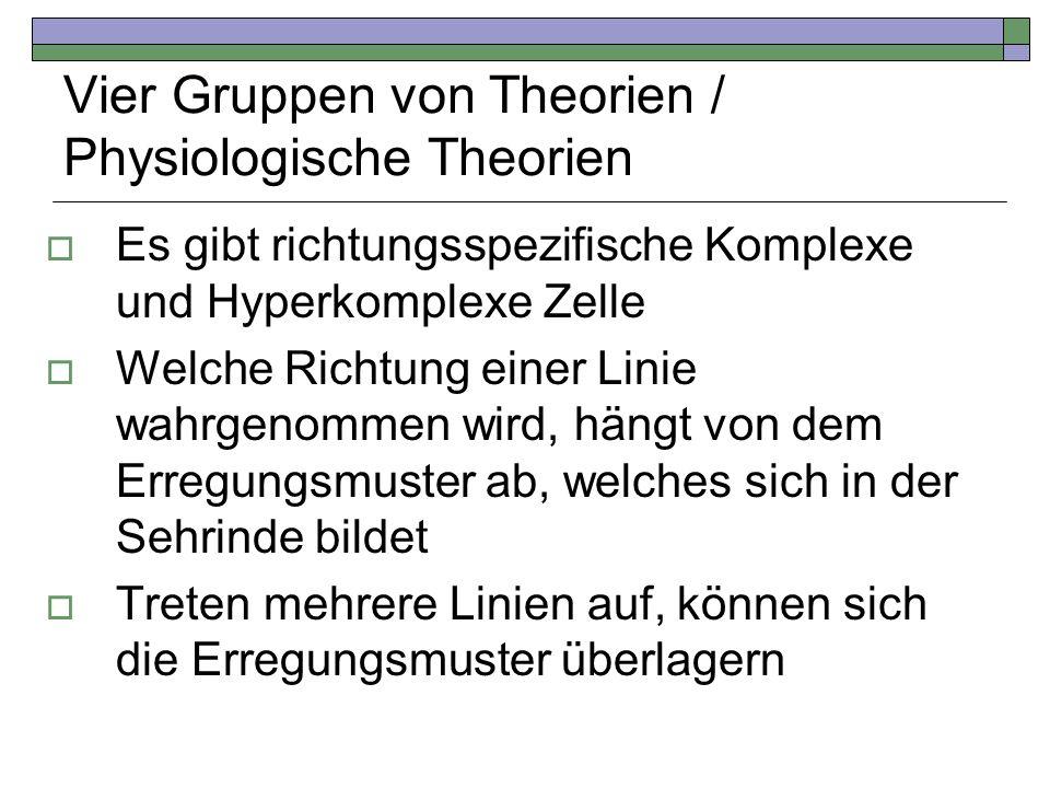 Vier Gruppen von Theorien / Physiologische Theorien Es gibt richtungsspezifische Komplexe und Hyperkomplexe Zelle Welche Richtung einer Linie wahrgeno