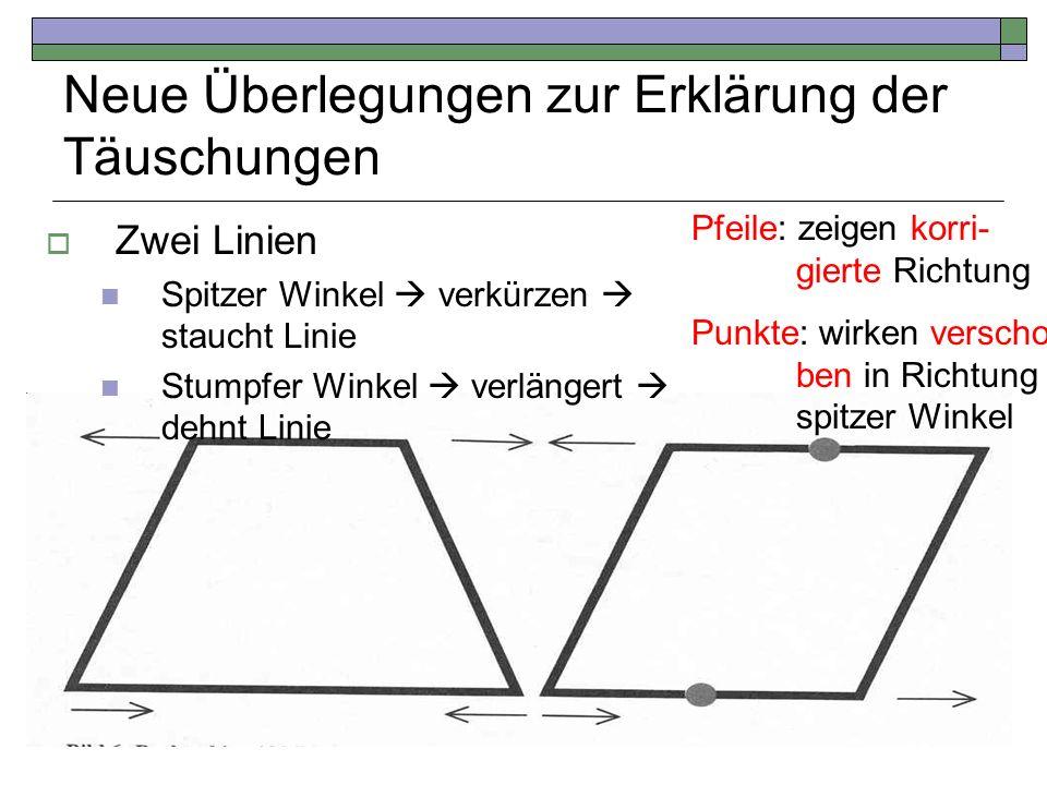 Neue Überlegungen zur Erklärung der Täuschungen Pfeile: zeigen korri- gierte Richtung Punkte: wirken verscho- ben in Richtung spitzer Winkel Zwei Lini