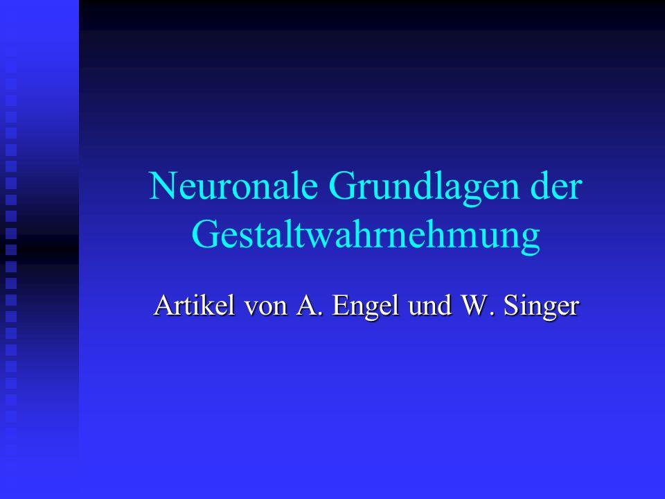 Neuronale Grundlagen der Gestaltwahrnehmung Artikel von A. Engel und W. Singer