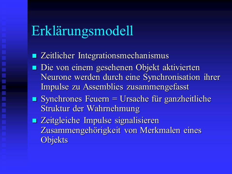Erklärungsmodell Zeitlicher Integrationsmechanismus Zeitlicher Integrationsmechanismus Die von einem gesehenen Objekt aktivierten Neurone werden durch