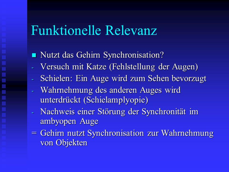 Funktionelle Relevanz Nutzt das Gehirn Synchronisation? Nutzt das Gehirn Synchronisation? - Versuch mit Katze (Fehlstellung der Augen) - Schielen: Ein