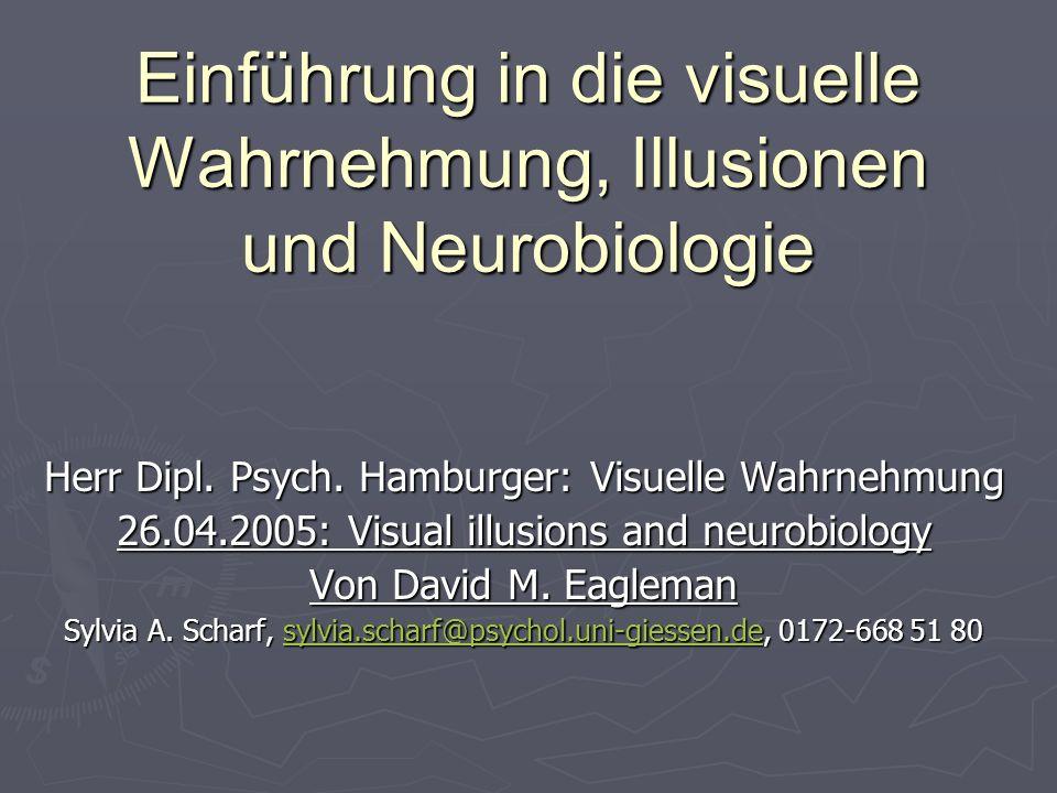 Einführung in die visuelle Wahrnehmung, Illusionen und Neurobiologie Herr Dipl. Psych. Hamburger: Visuelle Wahrnehmung 26.04.2005: Visual illusions an