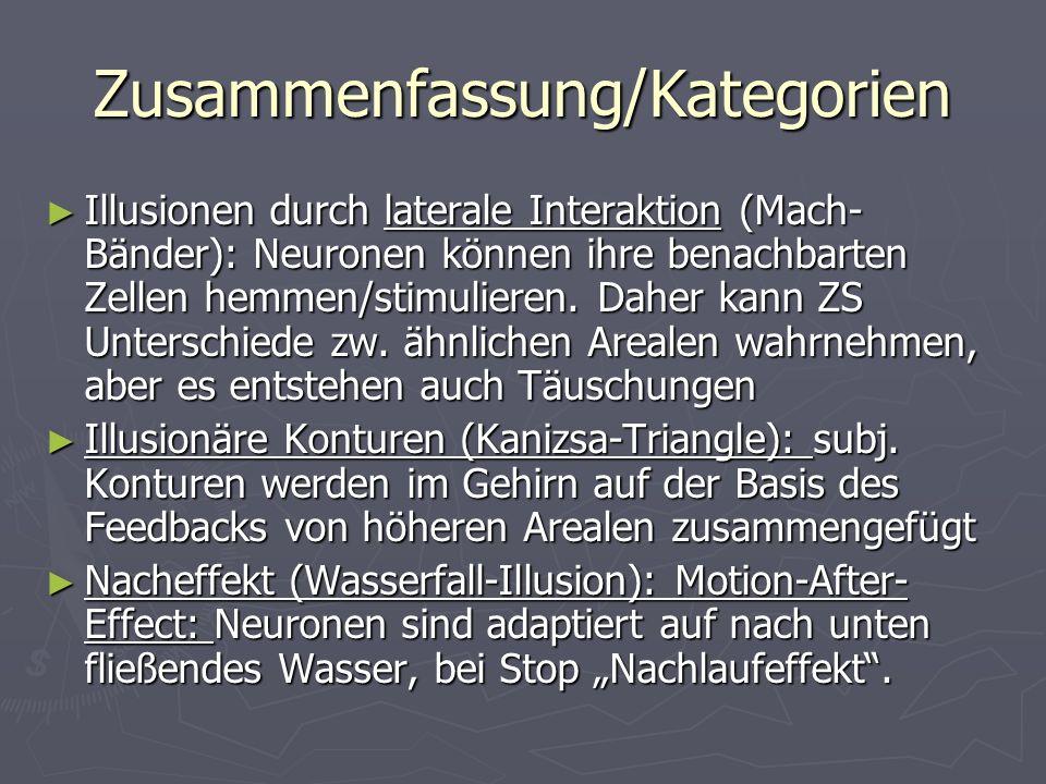 Zusammenfassung/Kategorien Illusionen durch laterale Interaktion (Mach- Bänder): Neuronen können ihre benachbarten Zellen hemmen/stimulieren.