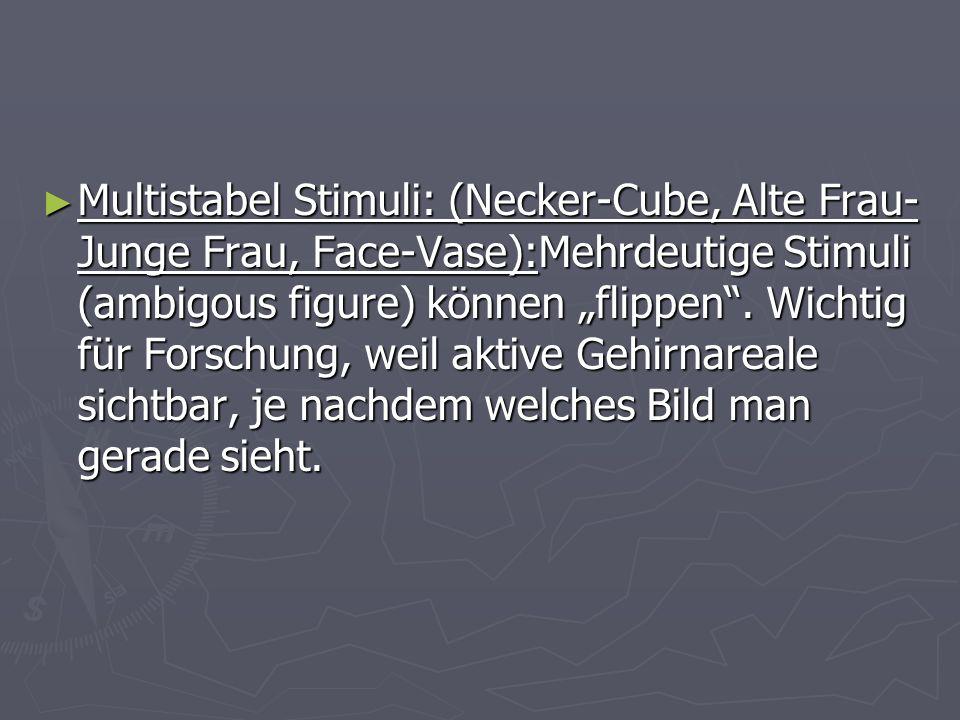 Multistabel Stimuli: (Necker-Cube, Alte Frau- Junge Frau, Face-Vase):Mehrdeutige Stimuli (ambigous figure) können flippen. Wichtig für Forschung, weil