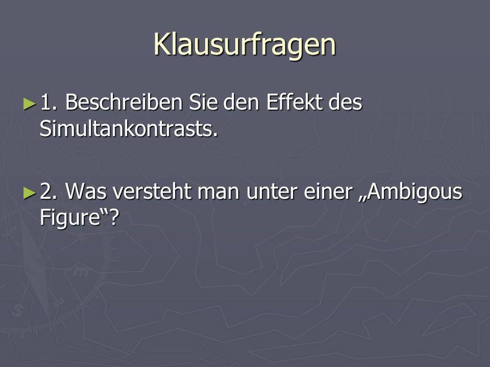 Klausurfragen 1. Beschreiben Sie den Effekt des Simultankontrasts. 1. Beschreiben Sie den Effekt des Simultankontrasts. 2. Was versteht man unter eine