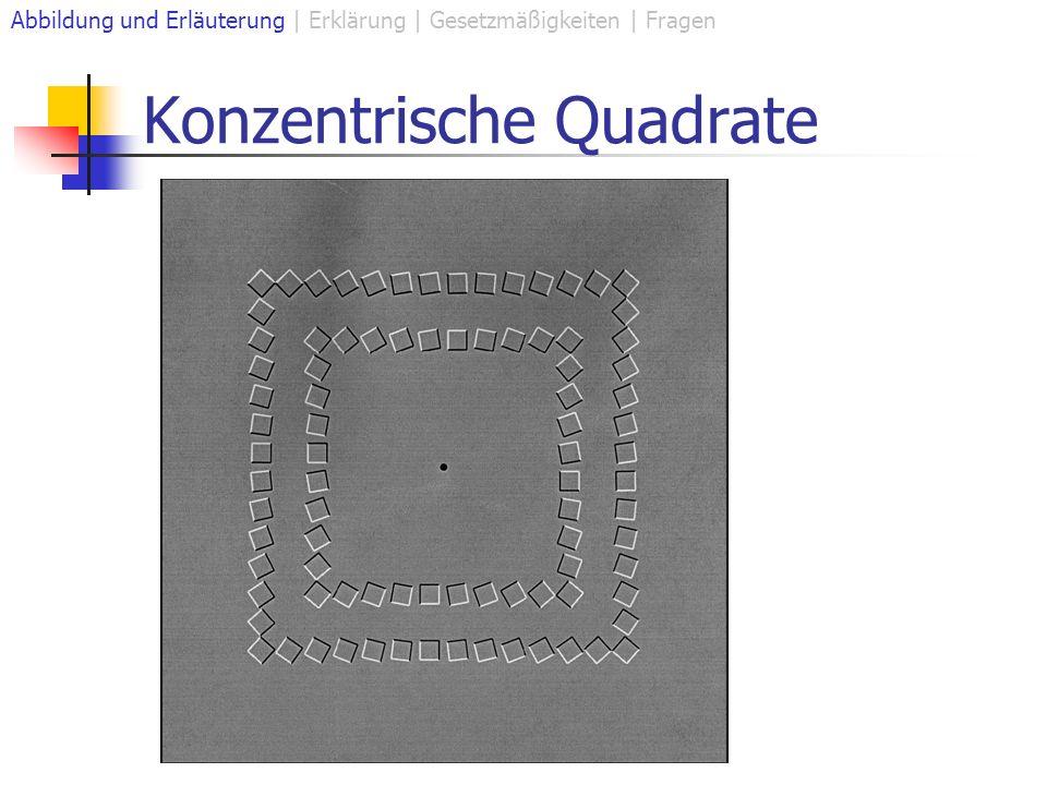 Konzentrische Quadrate Abbildung und Erläuterung | Erklärung | Gesetzmäßigkeiten | Fragen