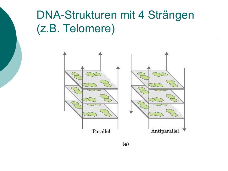DNA-Strukturen mit 4 Strängen (z.B. Telomere)