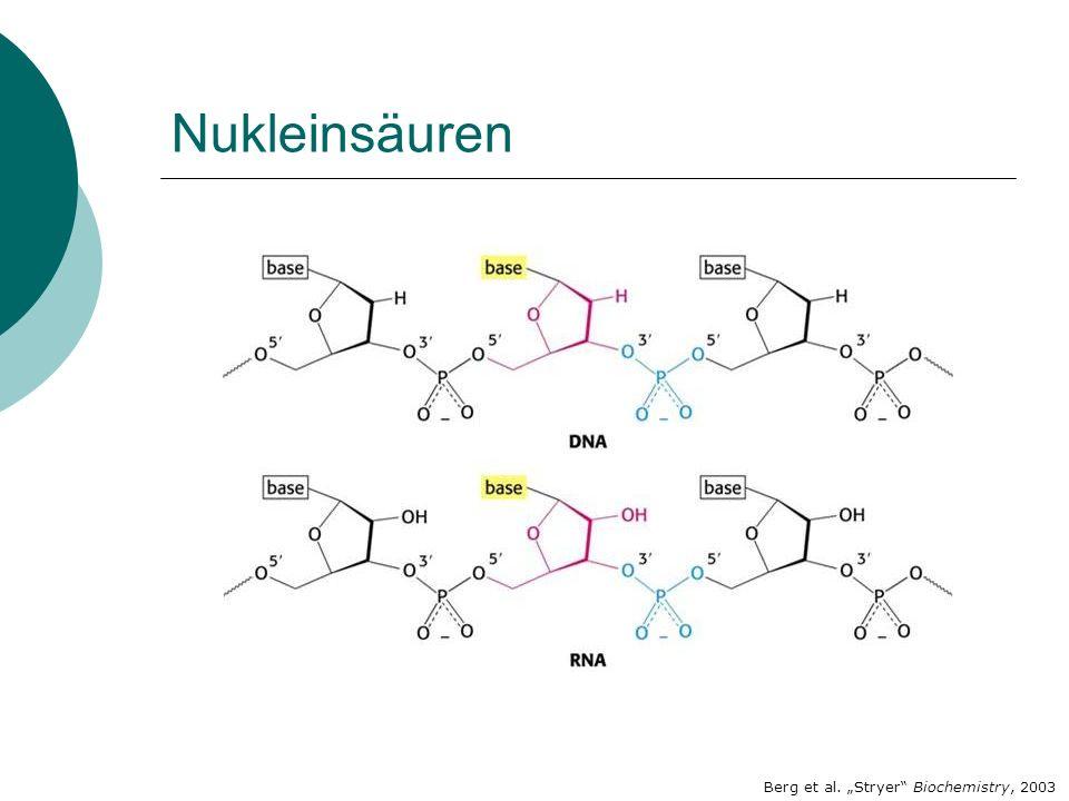 Berg et al. Stryer Biochemistry, 2003