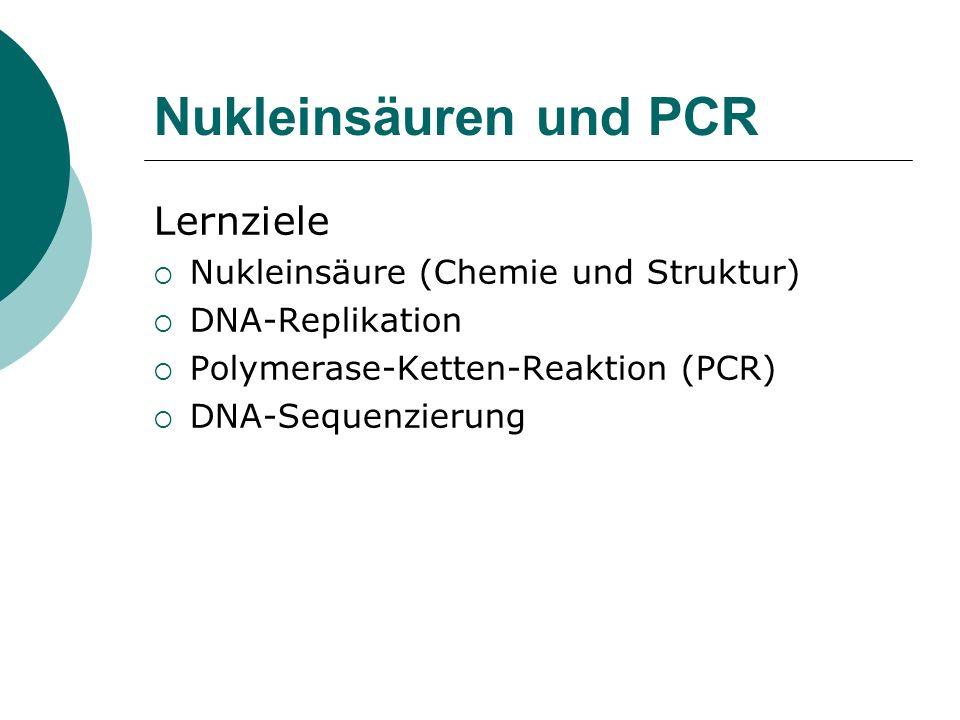 Nukleinsäuren und PCR Lernziele Nukleinsäure (Chemie und Struktur) DNA-Replikation Polymerase-Ketten-Reaktion (PCR) DNA-Sequenzierung
