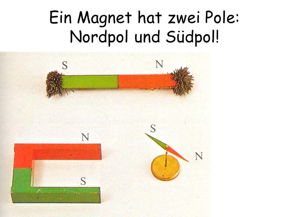 Ein Magnet hat zwei Pole: Nordpol und Südpol!