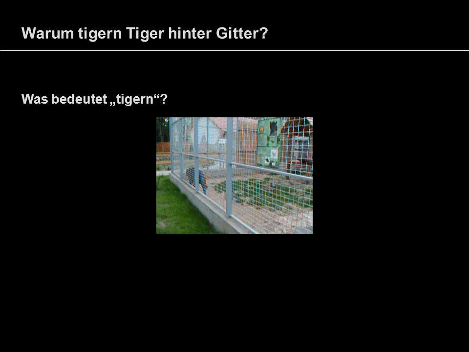 Warum tigern Tiger hinter Gitter? Was bedeutet tigern?