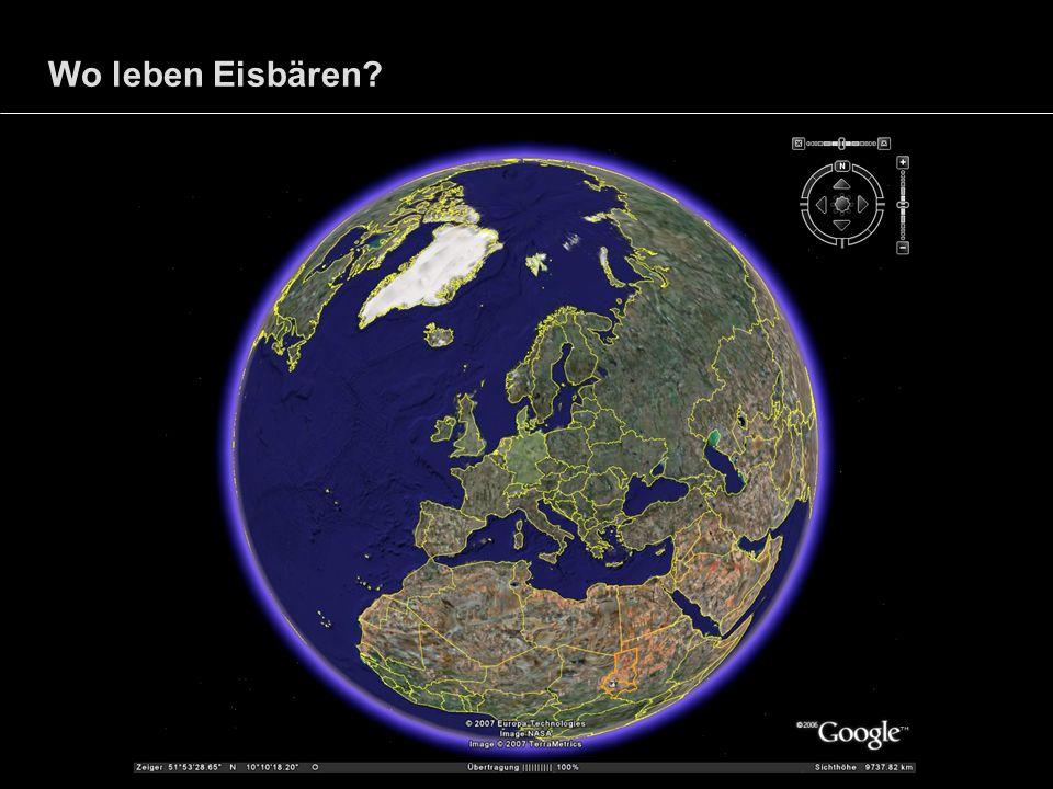 Wo leben Eisbären?