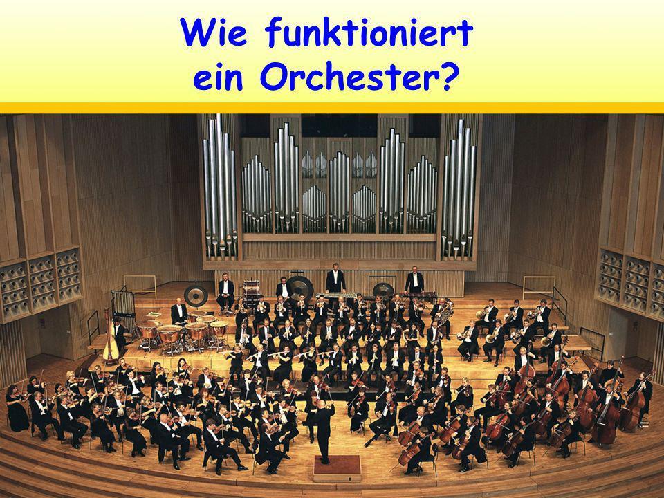 Welche Instrumente gibt es in einem Orchester?