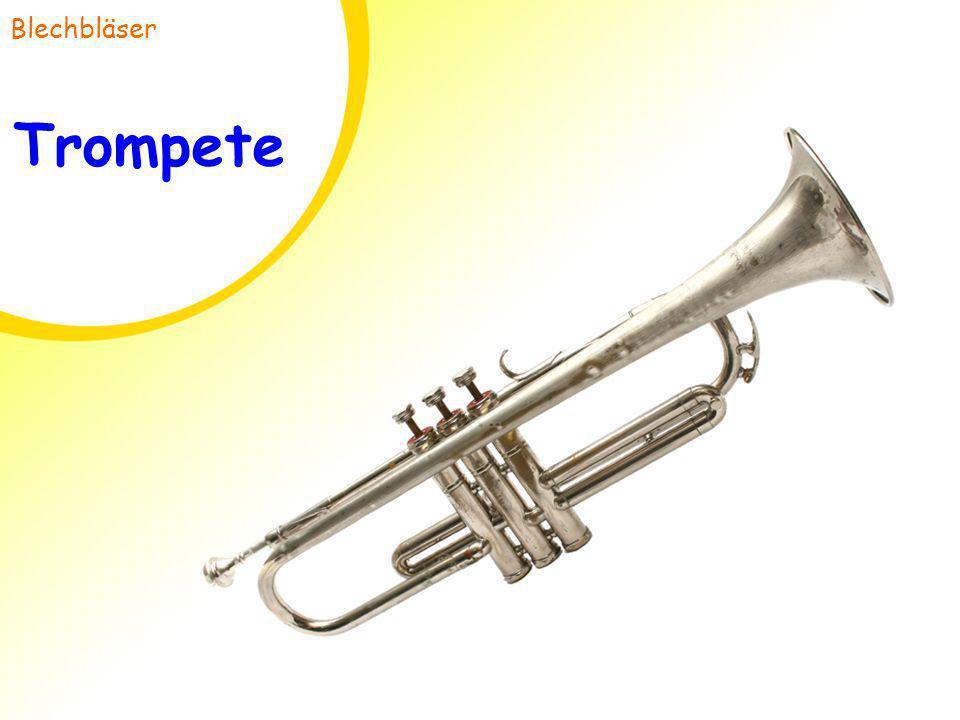 Trompete Blechbläser