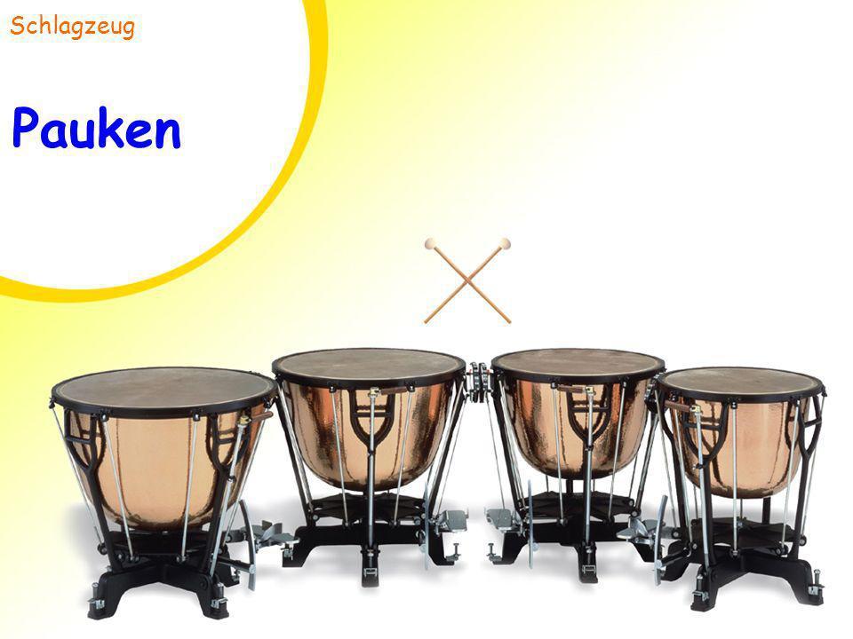 Pauken Schlagzeug