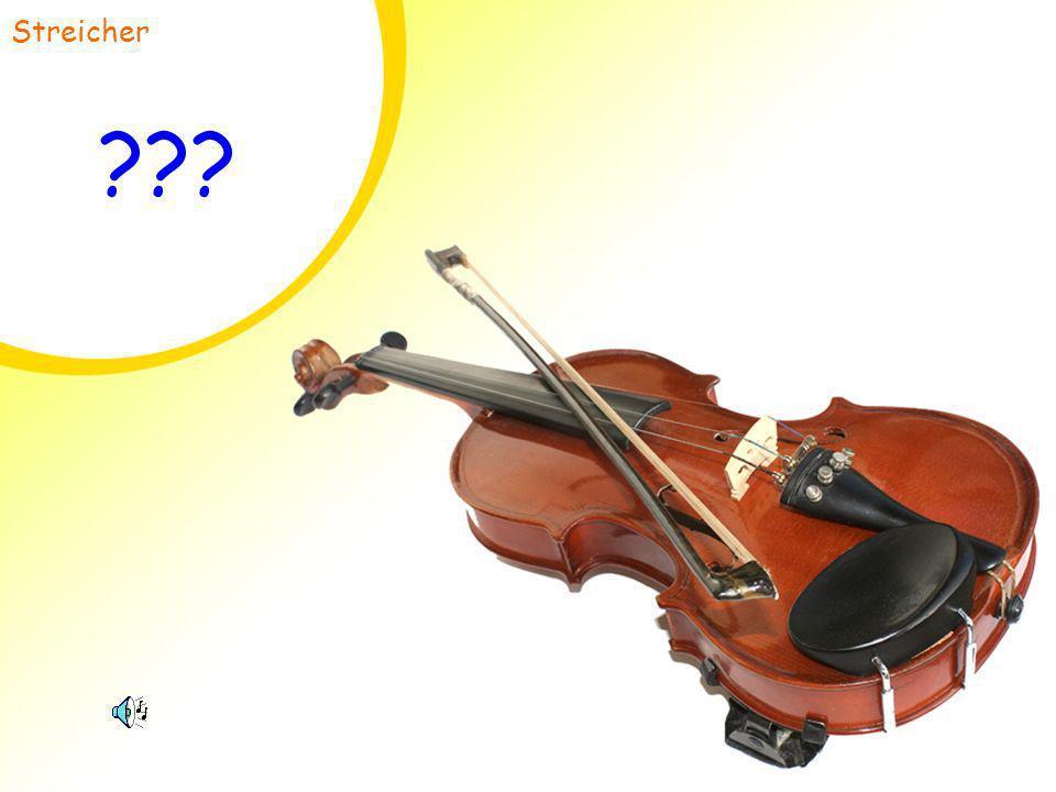 Streicher Geige