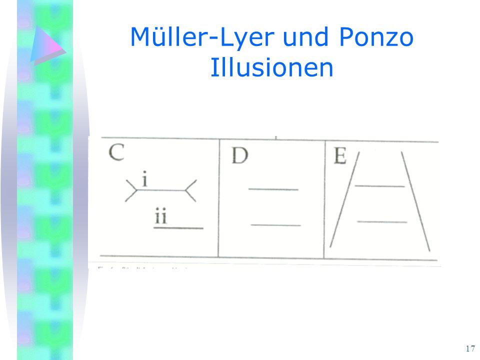 17 Müller-Lyer und Ponzo Illusionen
