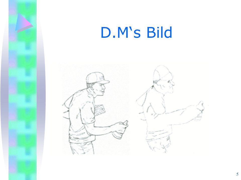 5 D.Ms Bild