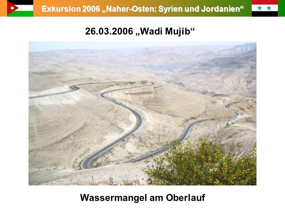 Exkursion 2006 Naher-Osten: Syrien und Jordanien 26.03.2006 Wadi Mujib Wassermangel am Oberlauf
