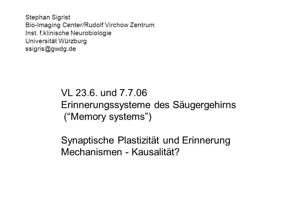 VL 23.6. und 7.7.06 Erinnerungssysteme des Säugergehirns (Memory systems) Synaptische Plastizität und Erinnerung Mechanismen - Kausalität? Stephan Sig